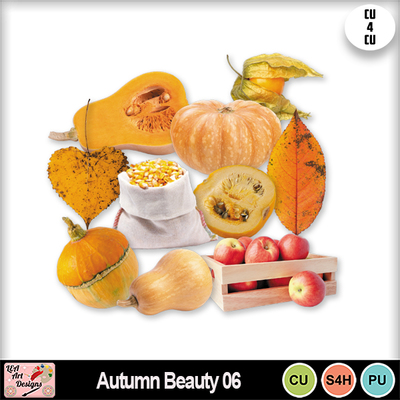 Autumn_beauty_06_preview