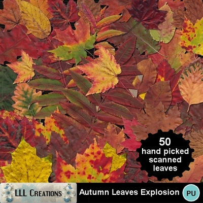 Autumn_leaves_explosion-01