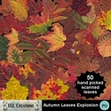Autumn_leaves_explosion-01_small