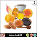 Autumn_look_007_preview_small