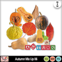 Autumn_mix_up_06_preview_small