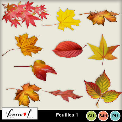 Louisel_cu_feuilles1_preview