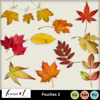 Louisel_cu_feuilles2_preview