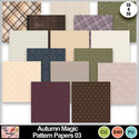 Autumn_magic_pattern_papers_03_preview_small