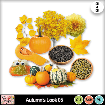 Autumn_look_05_preview