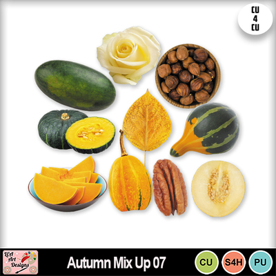 Autumn_mix_up_07_preview