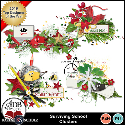Surviving_school_clusters