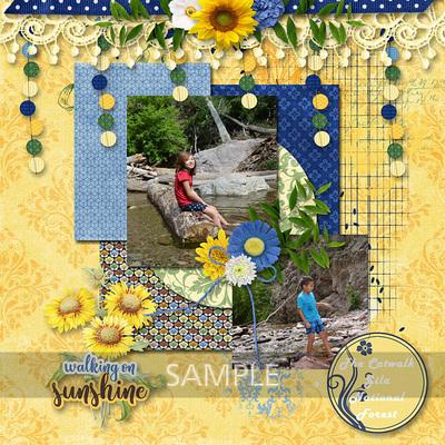 600-adbdesigns-sunshiney-day-dana-02