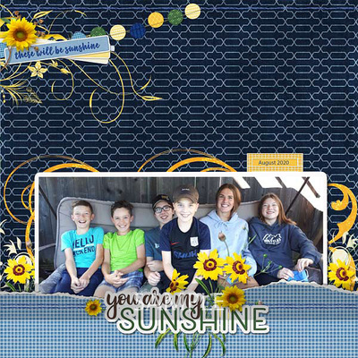 600-adbdesigns-sunshiney-day-renee-02-