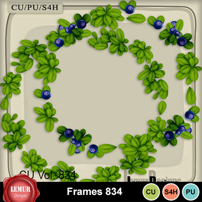 Frames834