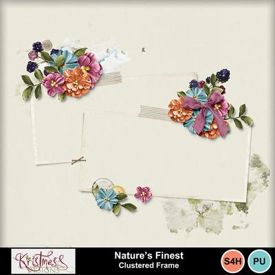 Naturesfinest_frame