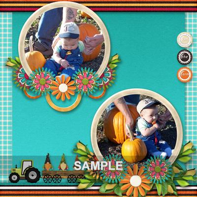 Pumpkinfarm5