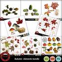 Autumnbundle_small
