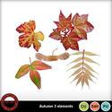 Autumn3_small