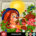 Hedgehog838_small