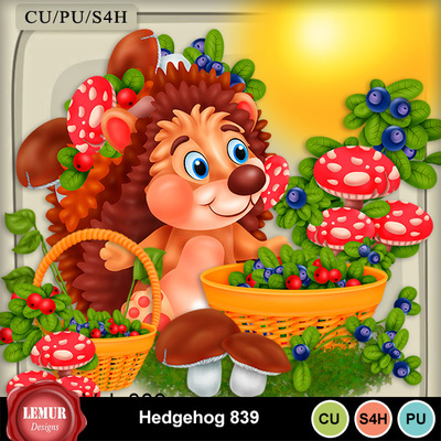 Hedgehog839