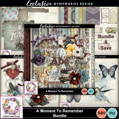 A_moment_to_remember_bundle