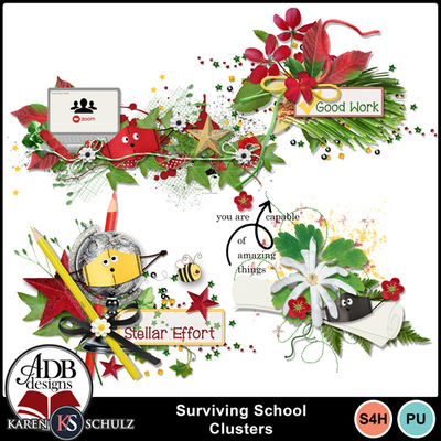 Surviving-school-clusters-1