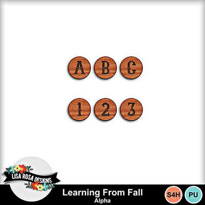 Lisarosadesigns_learningfromfall_alpha