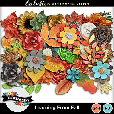 Lisarosadesigns_learningfromfall_elements3