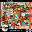 Lisarosadesigns_learningfromfall_preview_small