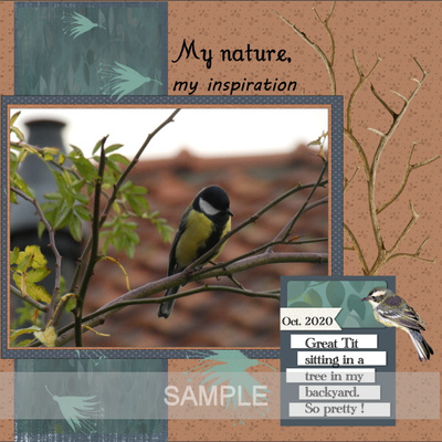 Msp_walk_with_nature_page4