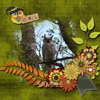 600-adbdesigns-owl-be-watching-you-shaunna-01-jpg
