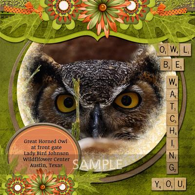 600-adbdesigns-owl-be-watching-you-poki-01