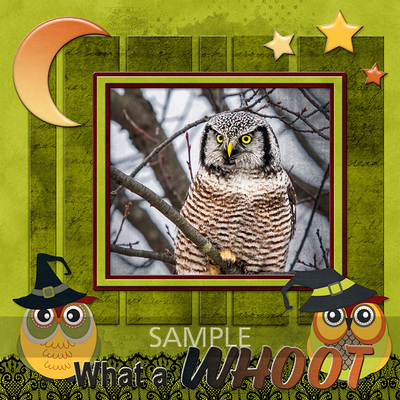 600-adbdesigns-owl-be-watching-you-poki-02