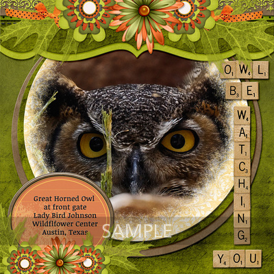 600-adbdesigns-owl-be-watching-you-poki-01