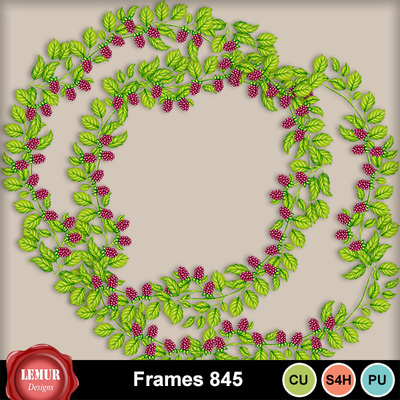 Frames1_845