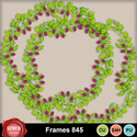 Frames1_845_small