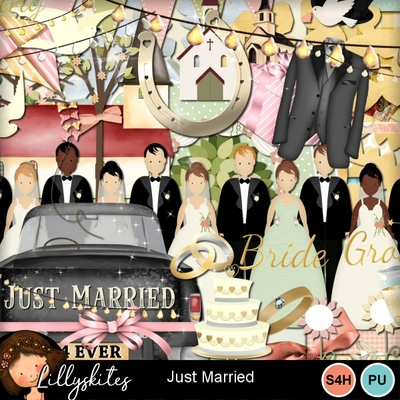 Just_married_1