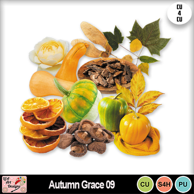 Autumn_grace_09_preview