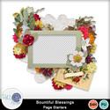 Pbs_bountiful_cl_sample_small