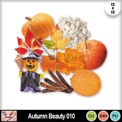 Autumn_beauty_010_preview