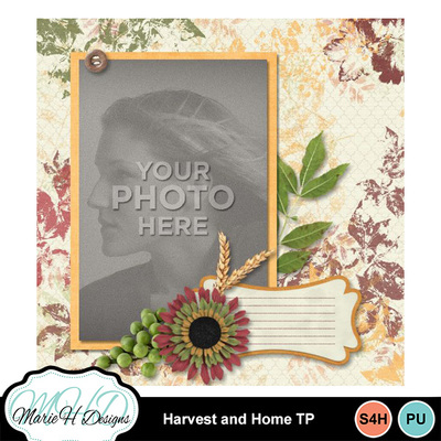 Harvest_and_home_tp_03