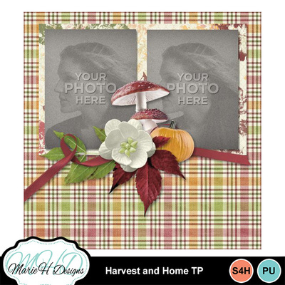 Harvest_and_home_tp_04
