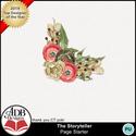 Adb_storyteller_gift_cl10_small