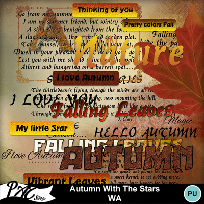 Patsscrap_autumn_with_the_stars_pv_wa