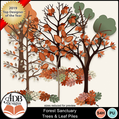 Forestsanctuary_trees