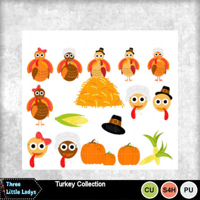 Turkey_collection-tll