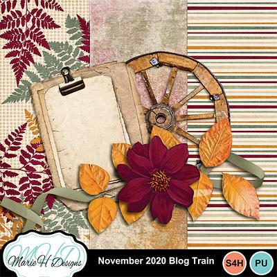 November_20_blog_train
