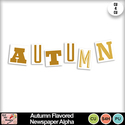 Autumn_flavored_newspaper_alpha_preview_small