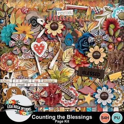 Lisarosadesigns_countingtheblessings_pagekit