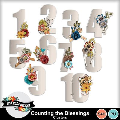 Lisarosadesigns_countingtheblessings_clusters