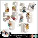 Lisarosadesigns_countingtheblessings_clusters_small