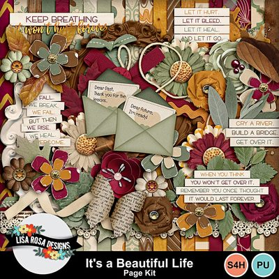 Lisarosadesigns_itsabeautifullife_pagekit