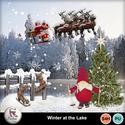 Pv_winter_at_the_lake_small
