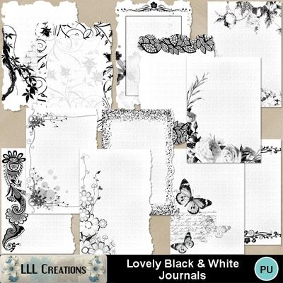 Lovely_black___white_journals-01